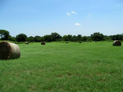 0000 FARM ROAD 3105, Pickton, TX 75471 - Photo 1