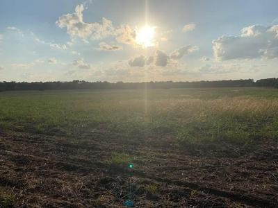 0000 FM 547, Farmersville, TX 75442 - Photo 2