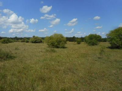 TBD CR 1126, Cumby, TX 75433 - Photo 2