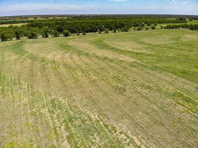 LOT 12 CR 1091, Celeste, TX 75423 - Photo 2