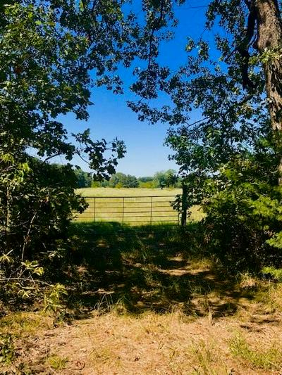 TBD 003 PRIVATE ROAD 5860, Yantis, TX 75497 - Photo 2