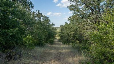 TR 3 FM 2190, Jacksboro, TX 76458 - Photo 2