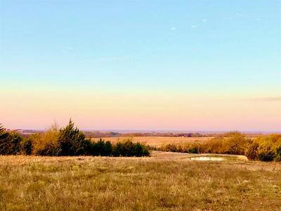 TBD COUNTY ROAD 703, FARMERSVILLE, TX 75442 - Photo 1