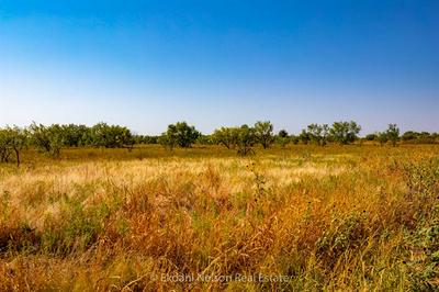 TBD FM 707, Anson, TX 79501 - Photo 1