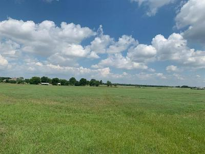 TRACT 3 COUNTY ROAD 1300, Bridgeport, TX 76426 - Photo 1