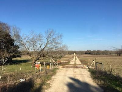 TBD FM 1451, Teague, TX 75860 - Photo 1