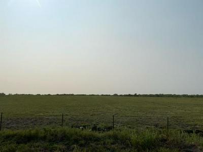 TBD COUNTY RD 1098, Celeste, TX 75423 - Photo 1