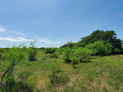 TBD N HWY 84, Coleman, TX 76834 - Photo 1