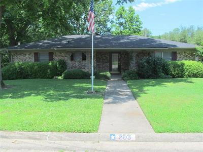 203 LEE RAY DR, Winnsboro, TX 75494 - Photo 2
