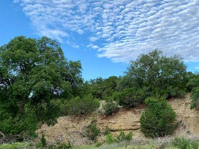 TBD CR 146, Tuscola, TX 79562 - Photo 2