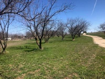 9978 HWY 283, COLEMAN, TX 76834 - Photo 2