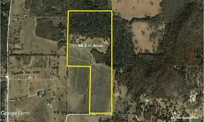 66.5 AC COUNTY ROAD 286, Collinsville, TX 76233 - Photo 1