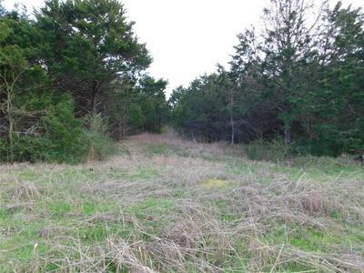 TBD AVENUE D, Point, TX 75472 - Photo 1