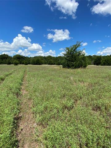 TBD COUNTY ROAD 1136, Cumby, TX 75433 - Photo 2