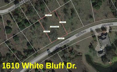 1610 WHITE BLUFF DR, Whitney, TX 76692 - Photo 1