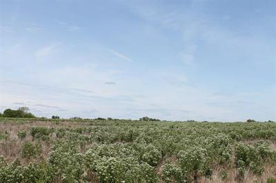 TRACT 3 CR 2260, Quinlan, TX 75474 - Photo 2