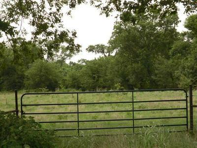 TBD SW NCR 3160 ROAD, Dawson, TX 76639 - Photo 1