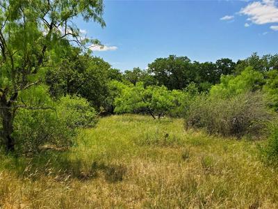 TBD FM 1853, Cisco, TX 76437 - Photo 2