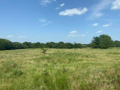 TBD FARM ROAD 69, Dike, TX 75437 - Photo 2