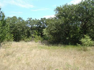 126.08 HWY 6, Eastland, TX 76448 - Photo 2