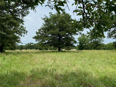 1596 COUNTY ROAD 4560, Winnsboro, TX 75494 - Photo 1