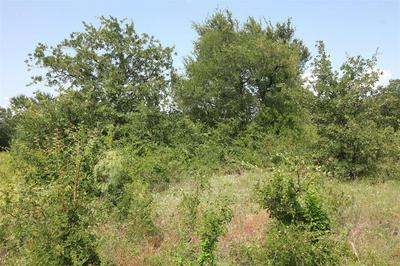 LOT 412 SUNSET BAY POINTE COURT, Chico, TX 76431 - Photo 2
