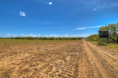 8725 L3 HWY 377 S, Brookesmith, TX 76827 - Photo 2