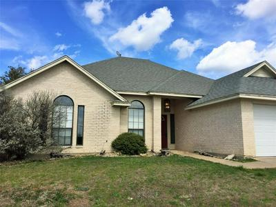 55 SOUTHERN HILLS N DRIVE, GRAFORD, TX 76449 - Photo 1