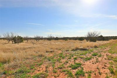 173 WESTERN TRL, Buffalo Gap, TX 79508 - Photo 2