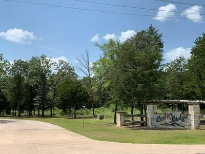 1.99 AC RS COUNTY ROAD 1180, Emory, TX 75440 - Photo 1