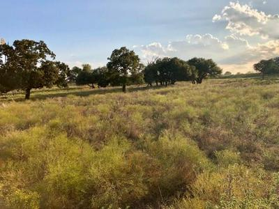 TBD COUNTY ROAD 236, HICO, TX 76457 - Photo 1