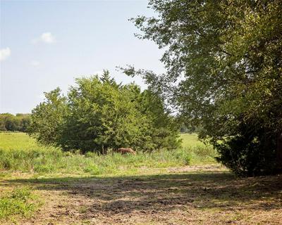TBD FM 36, Caddo Mills, TX 75135 - Photo 2