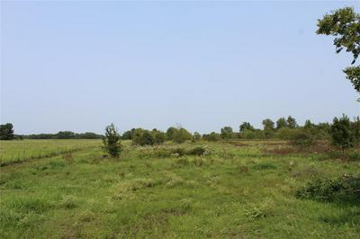 12.106 AC COUNTY ROAD 4502, Commerce, TX 75496 - Photo 1