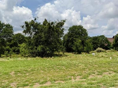 745 S SUGARTREE DR, Lipan, TX 76462 - Photo 2