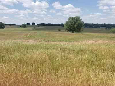 LOT 22 ROLLING HILLS BOULEVARD, Alvord, TX 76225 - Photo 1