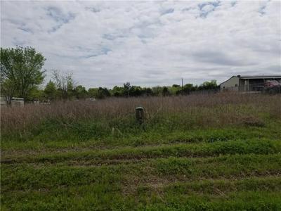 TBD QUINLAN PARKWAY, Quinlan, TX 75474 - Photo 1