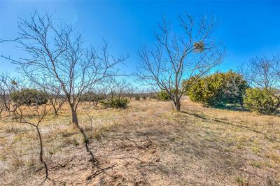 0 COUNTY RD 194, Tuscola, TX 79562 - Photo 1