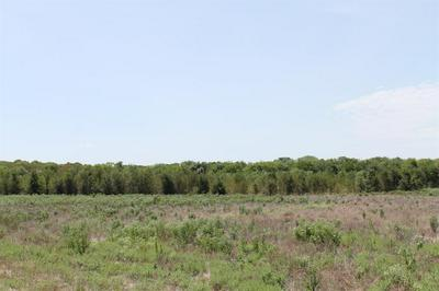 TRACT 2 CR 2260, Quinlan, TX 75474 - Photo 2