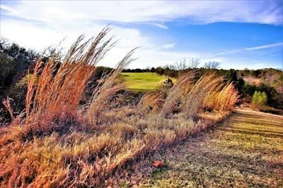 LOT 40A MERIDIAN LANE, Gordonville, TX 76245 - Photo 2