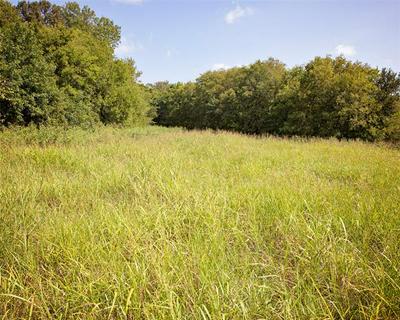 TBD FM 36, Caddo Mills, TX 75135 - Photo 1