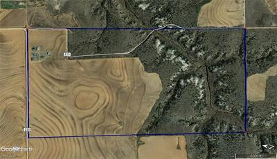 TBD COUNTY RD 233, Rotan, TX 79546 - Photo 1
