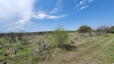 LOT 2 FM 3021, Brownwood, TX 76801 - Photo 2