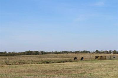 20816 FM 901, Gordonville, TX 76245 - Photo 2