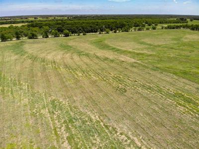 LOT 7 CR 1092, Celeste, TX 75423 - Photo 2