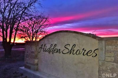 TBD HIDDEN SHORES DRIVE, Cisco, TX 76437 - Photo 1