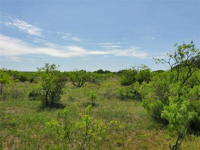 TBD N HWY 84, Coleman, TX 76834 - Photo 2