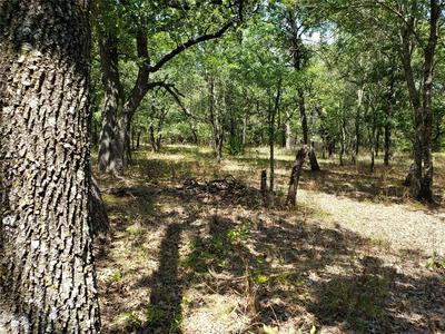 239 MUSTANG SPRINGS CIR, Sunset, TX 76270 - Photo 1