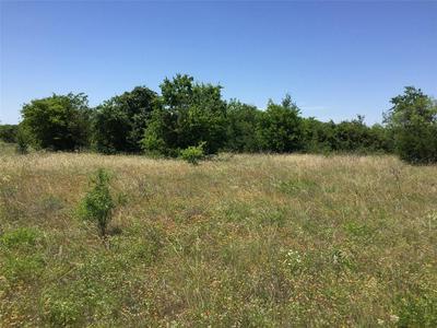 TBD W FM 217, Jonesboro, TX 76538 - Photo 1