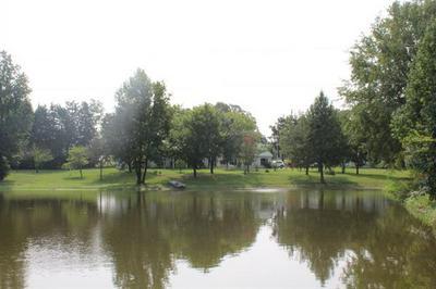 609 COUNTY ROAD 4700, Winnsboro, TX 75494 - Photo 2