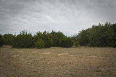 TBD W HWY 36, Hamilton, TX 76531 - Photo 2